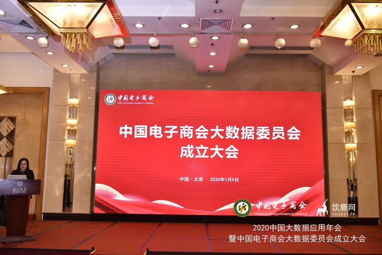 中国电子商会大数据委员会在京正式成立
