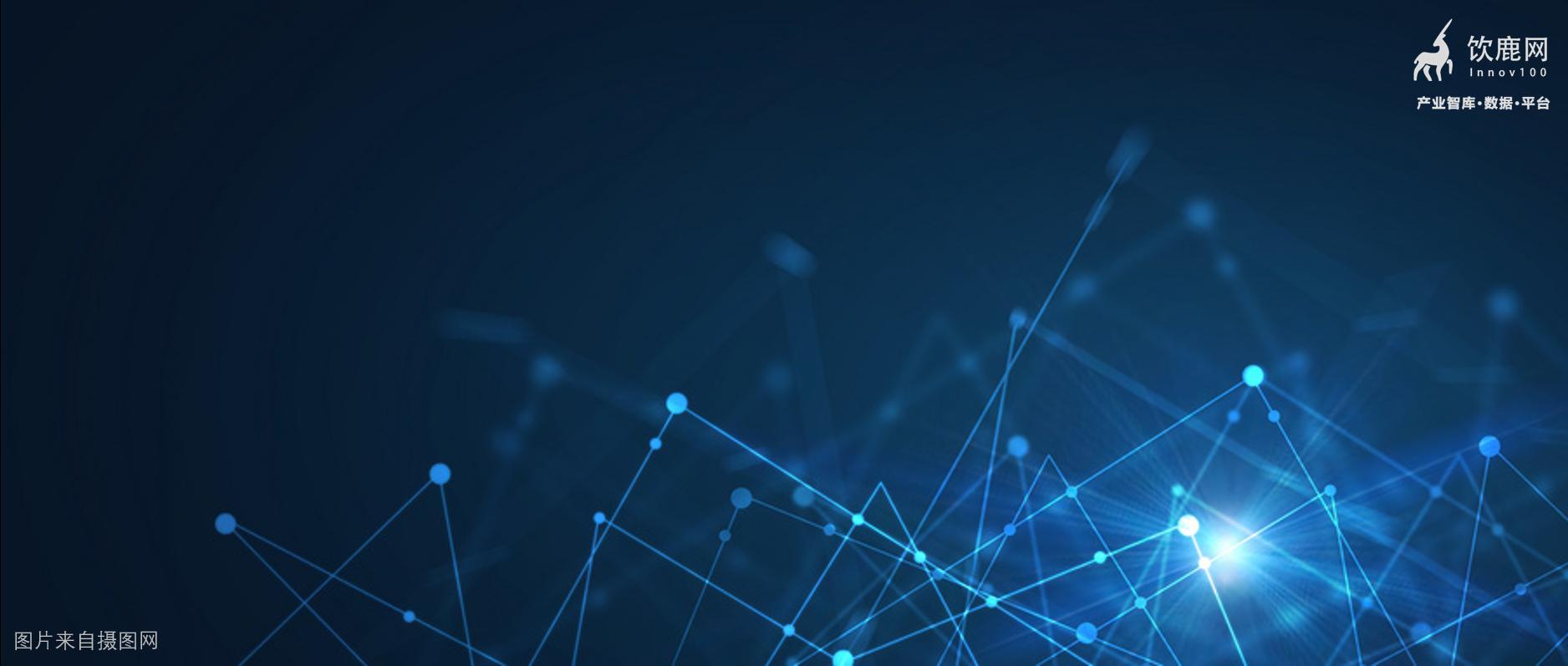 赛智时代:政府数字化转型路径研究